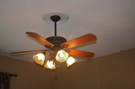 medallions ceiling fan