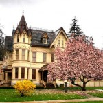 How to prepare the house for spring