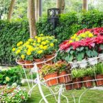 Decorate your garden with the best materials